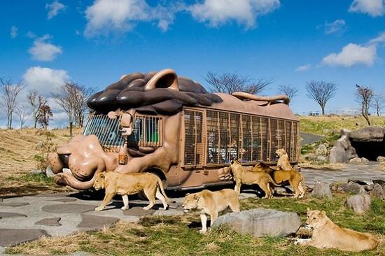 九州自然動物公園