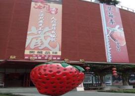 【大湖採果草莓酒莊.泰安湯饗一日遊】台中自由行套票3-31天