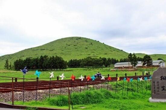 濟州Rail Bike體驗