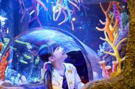《全球最大水族館品牌》 Sea Life 海洋探索館