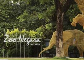 【Zoo Negara 馬來西亞國家動物園】│吉隆坡自由行套票3-7天