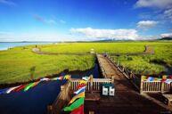中國最美濕地~若爾蓋花湖