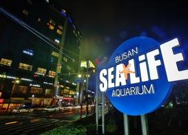 【Sea Life水族館】釜山自由行套票3-14天