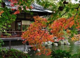 【3小時計程車專車暢遊福岡市內熱點 】福岡自由行套票3-31天