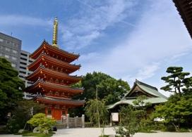 【3小時計程車專車暢遊福岡3大神社  】福岡自由行套票3-31天
