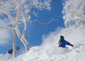 【手稻滑雪場一天團】札幌自由行套票5-31天