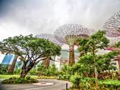 新加坡濱海灣花園