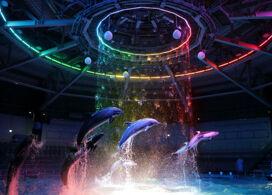 【品川Maxell Aqua Park】東京自由行套票3-31天