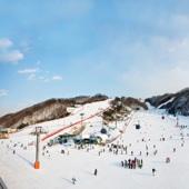 【大明初級滑雪一天團 】首爾自由行套票3-14天