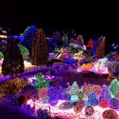 【夜遊晨靜樹木園燈節一天團 】首爾自由行套票3-14天