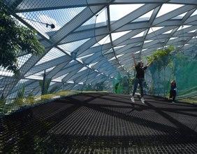【星耀樟宜宏利天空之網-步行網+星空花園門票】新加坡自由行套票3-14天
