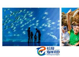 【珠海海洋王國】鯨鯊到底有幾大│金光飛航│珠海自由行住宿套票2-7天