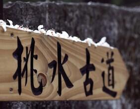 【挑水古道賞桐、東勢林場賞螢一日遊】台中自由行套票3-14天