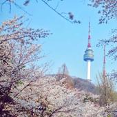 【N首爾塔 】首爾自由行套票3-14天