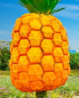 【名護鳳梨園】沖繩自由行套票3-31天
