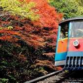 【神戶六甲山旅遊套票】大阪/神戶自由行套票3-31天