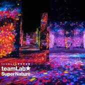 【澳門teamLab】超自然空間【Soft Opening Special - 2位成人及2位小童】門票+美食餐券