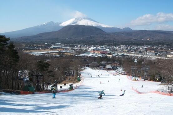 【澳門出發】東京+輕井澤自然美景+玩雪5天之旅《2020年11月1日起出發適用》