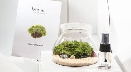 青苔生態盆景工作坊【BONART@中環大館】(需二次確認)