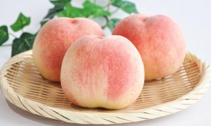 【日本直送‧早鳥預購🍑】和歌山 秀級水蜜桃 (約4kg, 12~15個裝)