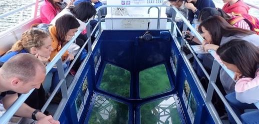【海下灣】海下灣海岸公園+玻璃船生態探索半日遊
