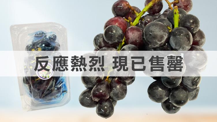 【反應熱烈,現已售罄】$68購買台灣直送🍇巨峰提子1組2盒 (原價$128)
