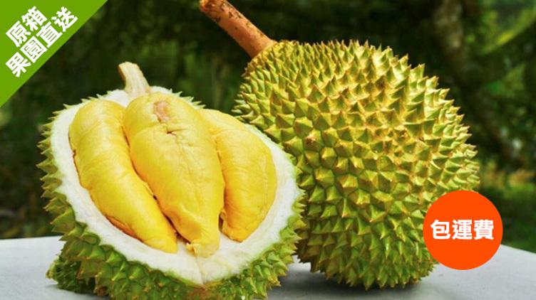 馬來西亞彭亨州勞勿貓山王 約5KG(2-3個)/10KG(5-6個) 優惠價$1080起/5KG(原價$1488起)